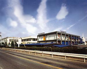Irumagawa Site